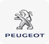 Garage peugeot jos petry roost for Garage peugeot portugal